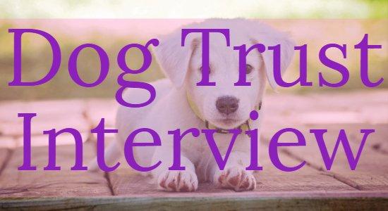 dog trust interview